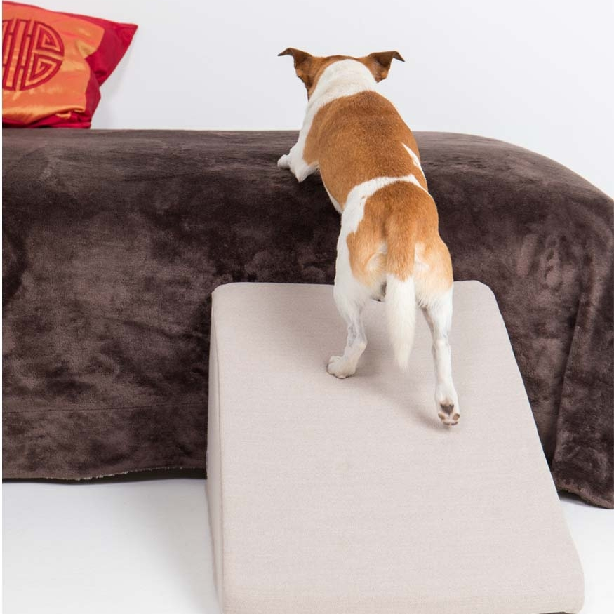 Perro subiendo por una rampa beige de Easy Step
