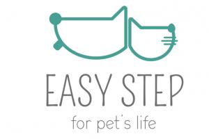 _easy step
