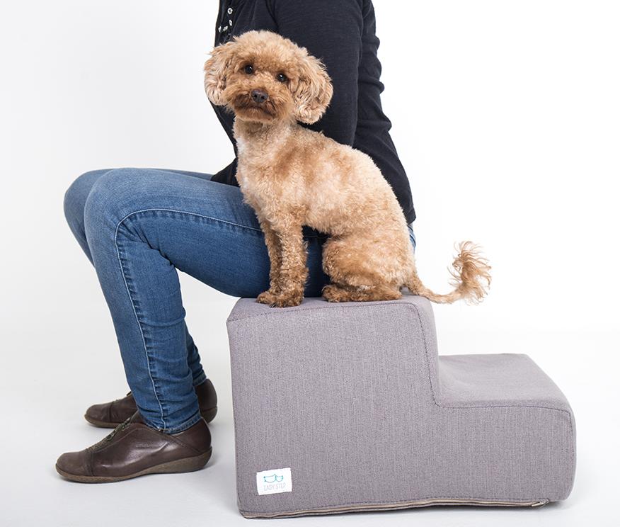 Caniche y humano sentados sobre escalera para mascotas