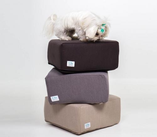 Bichón Maltés arriba de tres cubos para mascotas