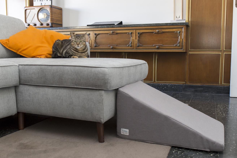 Gato descansando sobre el sofá con la rampa Easy Step