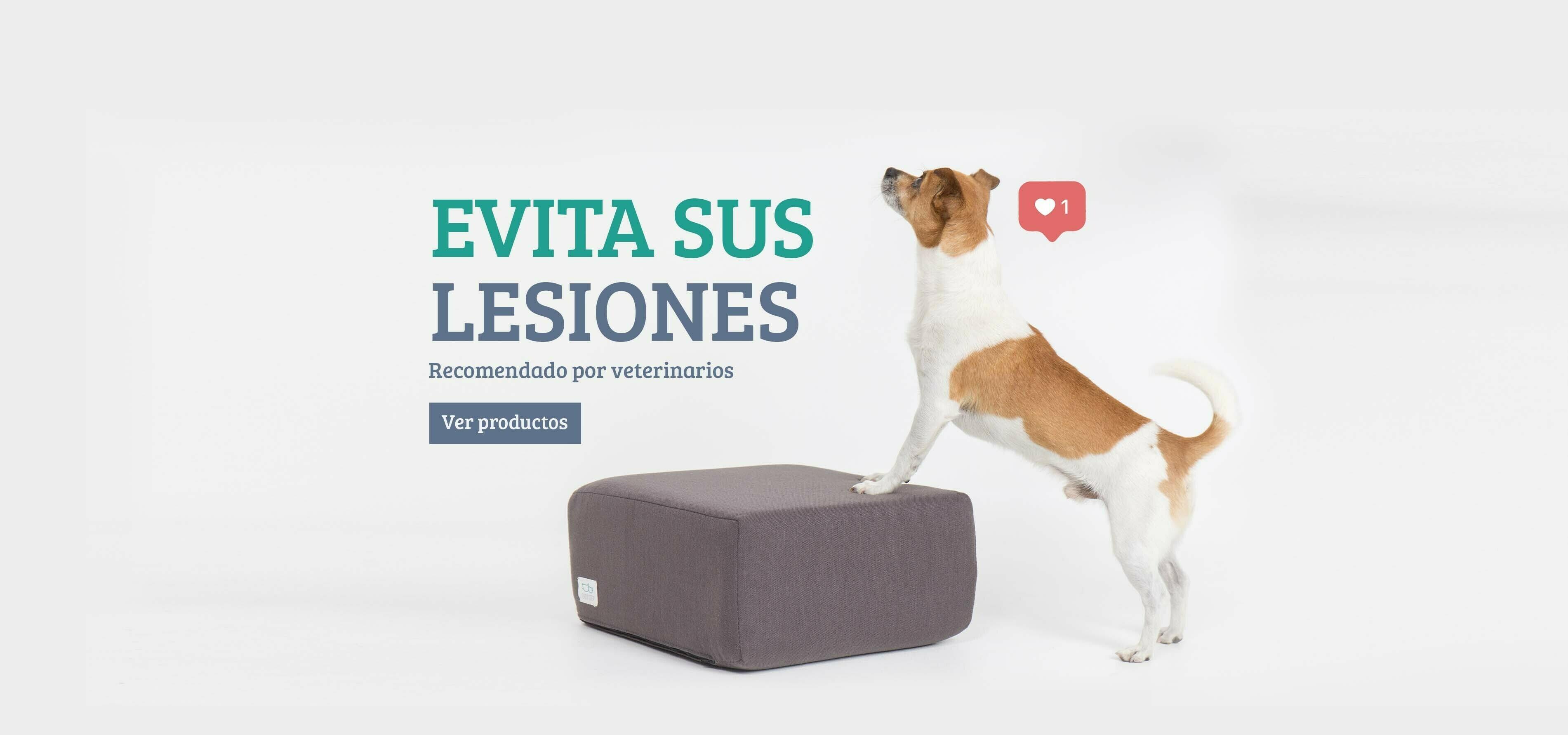 como prevenir lesiones en mascotas
