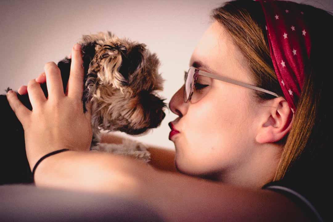 Zooterapia, cuando los animales salvan vidas