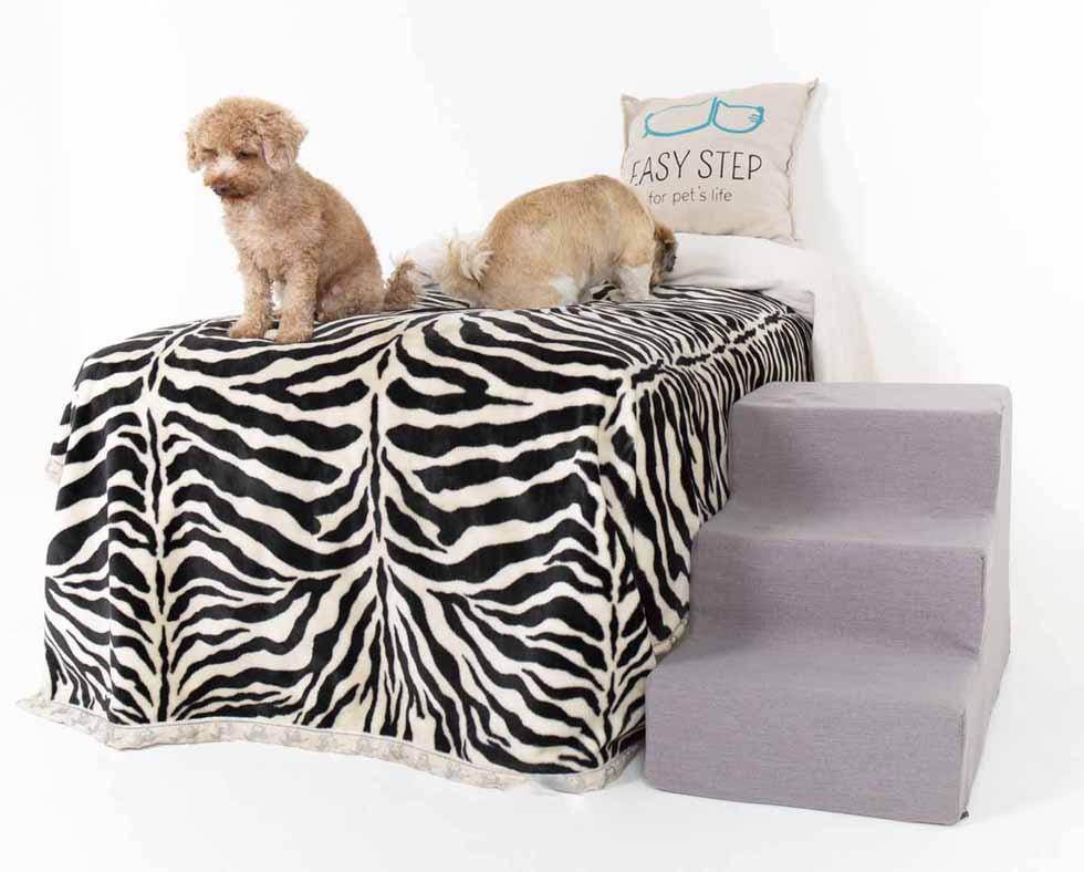 Dos perros en dormitorio con escalera para mascotas Easy Step
